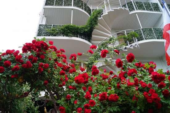Гостевой дом Летучая мышь - красивая гостиница у моря в г. Алушта Фото 1