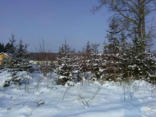 Участок 15 соток в дер. Юрково 103 км от МКАД в г. Боровск Фото 2