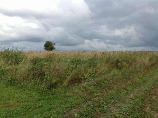 Продается земельный участок 12 соток в д. Шваново, Можайский р-н,140 км от МКАД по Минскому, Можайскому шоссе. Фото 4